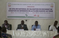 VALIDATION DOCUMENT DE RELANCE/FILIERE MANIOC A BLITTA