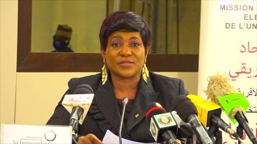 Election au Niger, la mission d'Observation de l'OIF conduite par Yawa TSEGAN fait le point