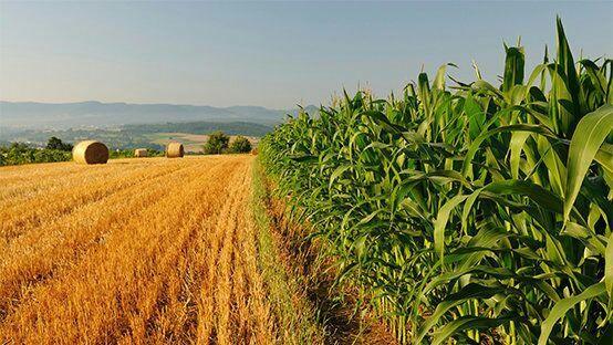 Le PASA, 10 ANS au bénéfice du secteur Agricole